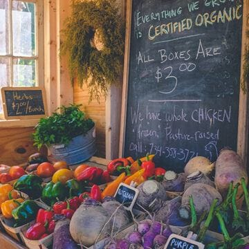 Sustainable Shops in Sheffield - Novel Student